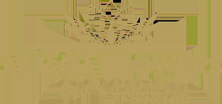 kaktüs (stenocereus marginatus )  | | Aliağa Çiçek Market